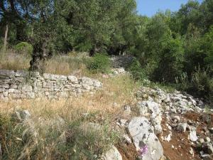Plot of Land Corfu