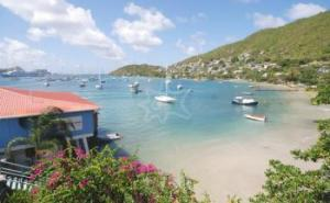 Tradewinds Harbour Bequia Saint Vincent Grenadines Caribbean