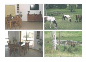 Ref: For Sale by Private Owner 3 Bedrooms Price 281,680 Euros
